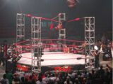 Ultimate X match