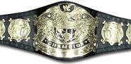 WWF Undisputed World Champion