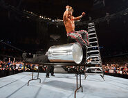 WrestleMania 22.44