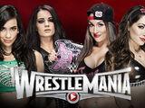WrestleMania 31 AJ Lee and Paige v The Bella Twins