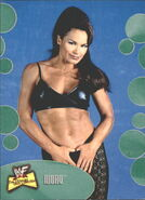 2001 WWF The Ultimate Diva Collection (Fleer) Ivory 52