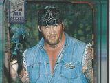 2002 WWF All Access (Fleer) Undertaker (No.67)