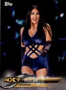 2018 WWE Wrestling Cards (Topps) Billie Kay 12