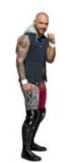 Ricochet stat photo
