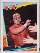 1992 WCW Trading Cards (Topps) Sting 41