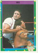1995 WWF Wrestling Trading Cards (Merlin) IRS 90