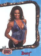 2002 WWE Absolute Divas (Fleer) Ivory 18