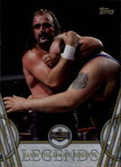2018 Legends of WWE (Topps) Jake The Snake Roberts 24