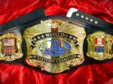 PREMIER Heavyweight Championship