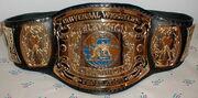 UWF TV Champion
