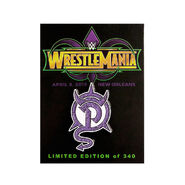 WrestleMania 34 Paige Pin
