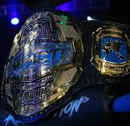 Impact World Title 2018