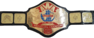 AWA World Tag Team Championship Belt