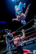 CMLL Martes Arena Mexico (September 24, 2019) 22