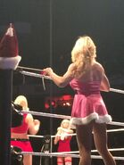 WWE House Show (Dec 29, 14') 5