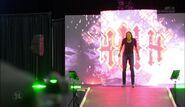 WrestleMania Dallas.00006