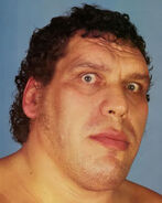 Andre the Giant4