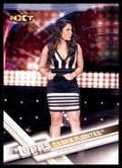 2017 WWE Wrestling Cards (Topps) Dasha Fuentes 68