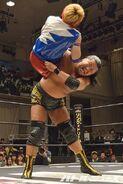 DDT Judgement 2015 5