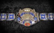 Nwa National Heavyweight Title 2