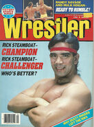 The Wrestler - May 1989