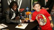WWE World Tour 2014 - Dublin.15