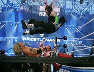 WrestleMania 23.9