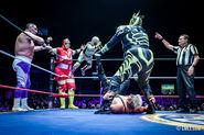 CMLL Martes Arena Mexico (February 25, 2020 17