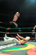 CMLL Martes Arena Mexico 8-29-17 3