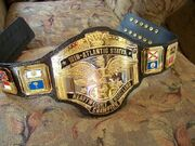 NWA Mid-Atlantic Champion (2)