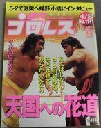 Weekly Pro Wrestling 1141