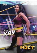 2016 WWE Divas Revolution Wrestling (Topps) Billie Kay 40