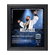 Bobby Roode Hell In A Cell 2017 15 x 17 Framed Plaque w Ring Canvas
