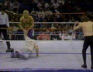 January 30, 1993 WWF Superstars of Wrestling.00017