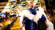 WrestleMania 24.9