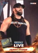 2013 TNA Impact Wrestling Live Trading Cards (Tristar) James Storm 44