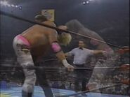 The Great American Bash 1996.00015