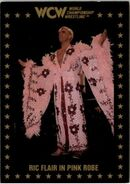 1991 WCW Collectible Trading Cards (Championship Marketing) Ric Flair 73