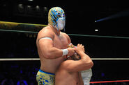 CMLL Domingos Arena Mexico (January 13, 2019) 14