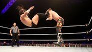 WWE World Tour 2014 - Dublin.2