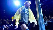 WrestleMania Revenge Tour 2013 - Cologne.11