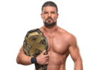 Bobby Roode WWE NXT Championship (new design)