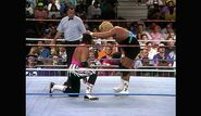 King of the Ring 1993.00029