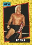 1991 WCW (Impel) Ric Flair 47