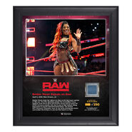 Ember Moon RAW New Orleans 15 x 17 Framed Plaque w Ring Canvas
