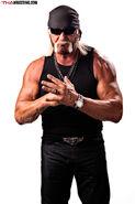 Hogan NWO TNA 2011-12