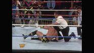 Survivor Series 1993.00005