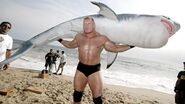 Brock Lesnar8