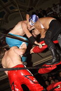 ROH Rising Above 2007 8