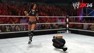 WWE 2K14 Screenshot.113